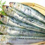 Manfaat Ikan Bagi Kesehatan Manusia